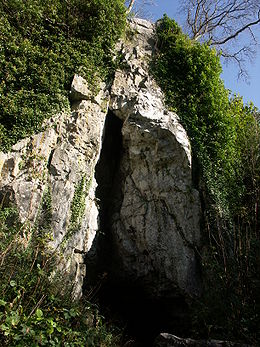 Limestone outcrop with triagular fissure (widest at the bottom, narrowing to the top). Foliage obscures the stone at either side, away from the cave entrance. Leafless trees stand at the top of the gorge. Foliage is outside the cave, in the foreground,