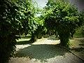 Parcul Herastrau (9466215884).jpg