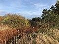 Park van Eden kleuren.jpg