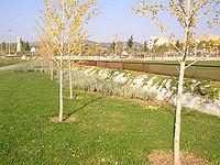Parque G-5.jpg