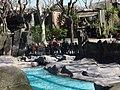 Parque Zoológico de Barcelona. Spain.jpg