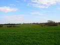 Patching Field - geograph.org.uk - 151204.jpg