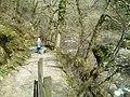 Path to Watersmeet .Devon - geograph.org.uk - 366572.jpg