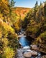Pemigewasset River (237581415).jpeg