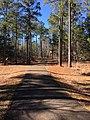 Persimmon Hill Trail 1.jpg