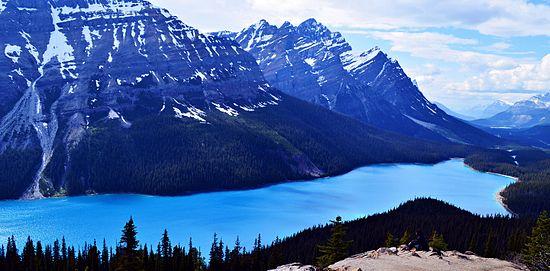 Peyto Lake Wikipedia