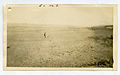 Photograph of a Man and a Dog in a Field - NARA - 7829567.jpg