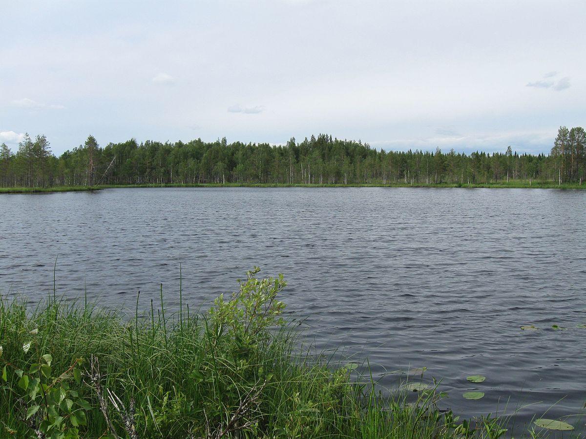 Kivijärvi Järvi