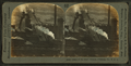 Plant of the blast furnace, Pittsburgh, Pa., U.S.A, from Robert N. Dennis collection of stereoscopic views.png