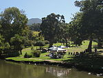 Pond and parties in Wynberg Park.JPG
