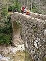 Pont de Salgueda DSCN1062.jpg