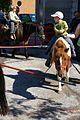 Pony rides (1459116202).jpg