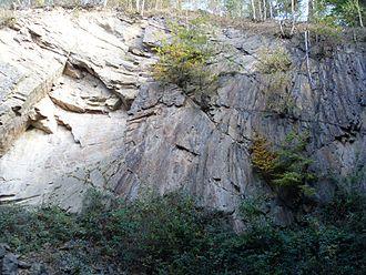 Tharandt Forest - Porphyrfächer, geological outcrop near Mohorn-Grund