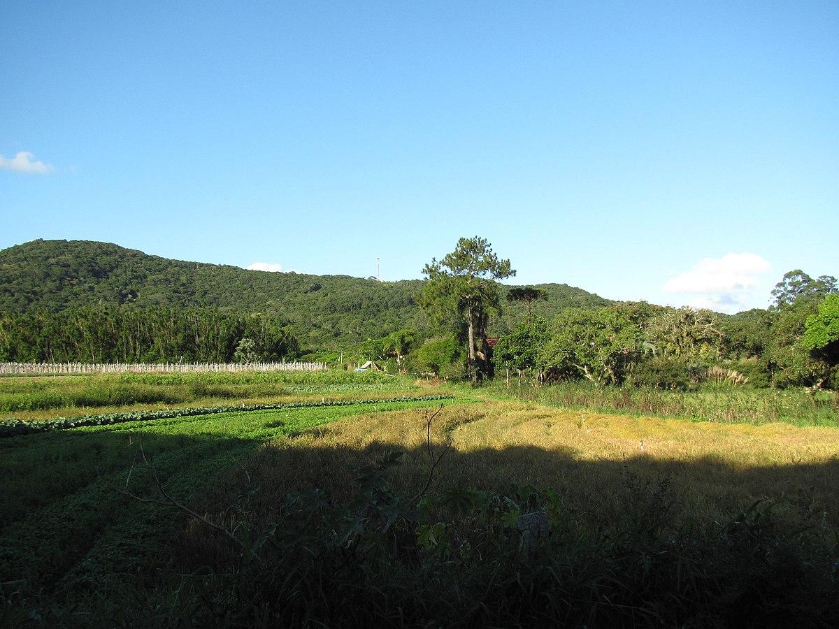 Zona Rural De Porto Alegre Ndash Wikip & 233dia A Enciclop & 233dia Livre