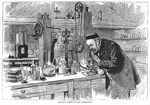 Fermentation - Louis Pasteur in his laboratory