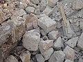 Preveza Thermal Spas Stones 17.jpg