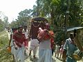 Procession of Dol Yatra with Palanquin.jpg