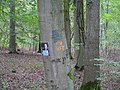 Protest sign in the Hambach forest 05.jpg