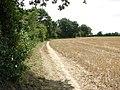 Public footpath to Burgate Lane - geograph.org.uk - 1451505.jpg