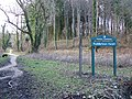 Puddletown Forest - geograph.org.uk - 1180790.jpg
