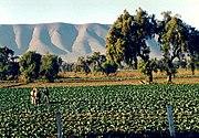 Landscape of the Mesoamerican highlands