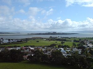 Puketutu Island - The island today, from Mangere Mountain