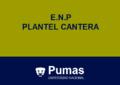 Pumas Cantera.png
