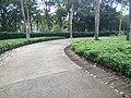 Putrajaya's Botanical Garden 29.jpg