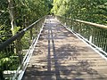Putrajaya Botanical Garden in Malaysia 24.jpg