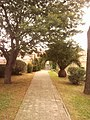 Quartiere XXVII Primavalle, Roma, Italy - panoramio - Laci30 (5).jpg