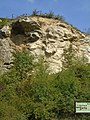 Róka-hegyi kőfejtő 5. sz. barlangja2.jpg