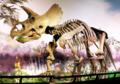 ROM-Dinos LastRoom triceratops.png