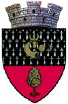 Coat of arms of Dolhasca