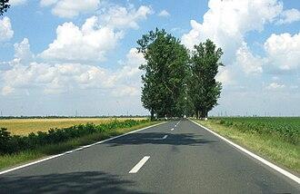 Brăila County - DN21, a road in Romania, in Brăila County