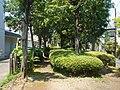 Rail trail (Ichinotsubo shortcut) - panoramio - Kaz Ish (5).jpg