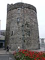 Reginald's Tower, Waterford - geograph.org.uk - 1542876.jpg