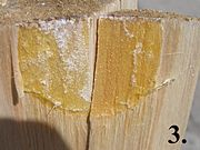 Resin pocket on picea board part3 beentree.jpg