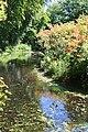 Rhododendronpark Bremen 20090513 064.JPG