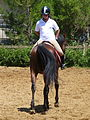 Riding a Horse Backwards 1110821.jpg