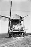 rietdekkers aan het werk bij een grondzeiler - egmond aan den hoef - 20031477 - rce