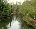 River Lagan, near Edenderry - geograph.org.uk - 701220.jpg