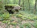 Rochefort-sur-la-Côte (Haute-Marne) dolmen du bois de la Grande Bay (05).jpg