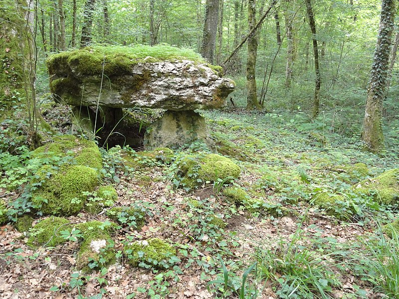 Rochefort-sur-la-Côte (Haute-Marne) dolmen du bois de la Grande Bay