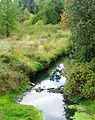 Rock Creek at Cornell 2 Hillsboro Oregon.JPG