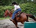 Rodeo in Panama 33.jpg