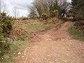 Rodhuish Common - geograph.org.uk - 153290.jpg