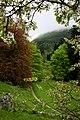 Rosendal, Hardanger - panoramio.jpg