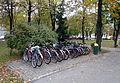 Rudnik nad Sanem - stojak rowerowy przed UGiM.jpg