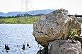 Ruin at the Wetlands, Thunder Bay (14651552662).jpg