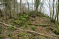 Ruined Wall, Shore Wood Belts - geograph.org.uk - 737209.jpg